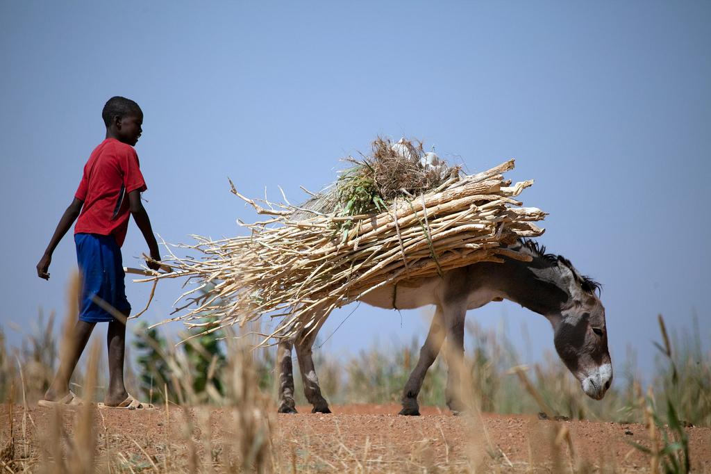 El Fasher, North Darfur 2010 [UNAMID/Flickr]
