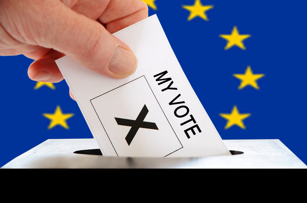 Voting in the EU elections. [Steve Woods/Shutterstock].