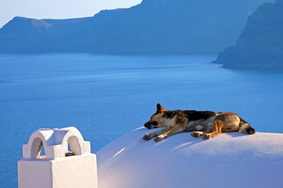 Siesta in Greece