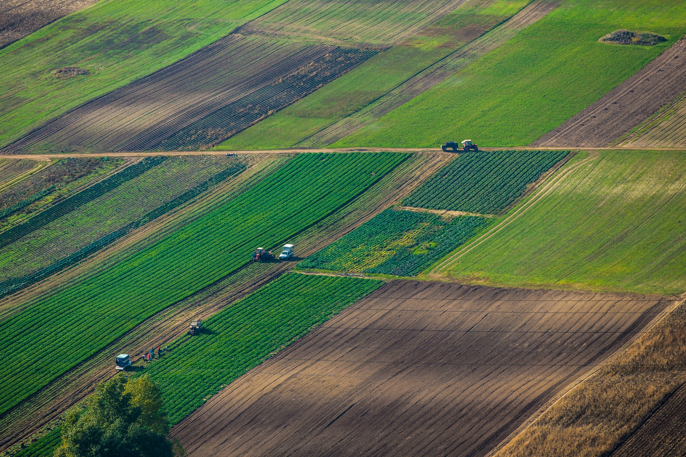 Land grabbing, still a huge problem in Eastern Europe
