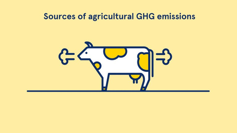 Sources of agricultural GHG emissions