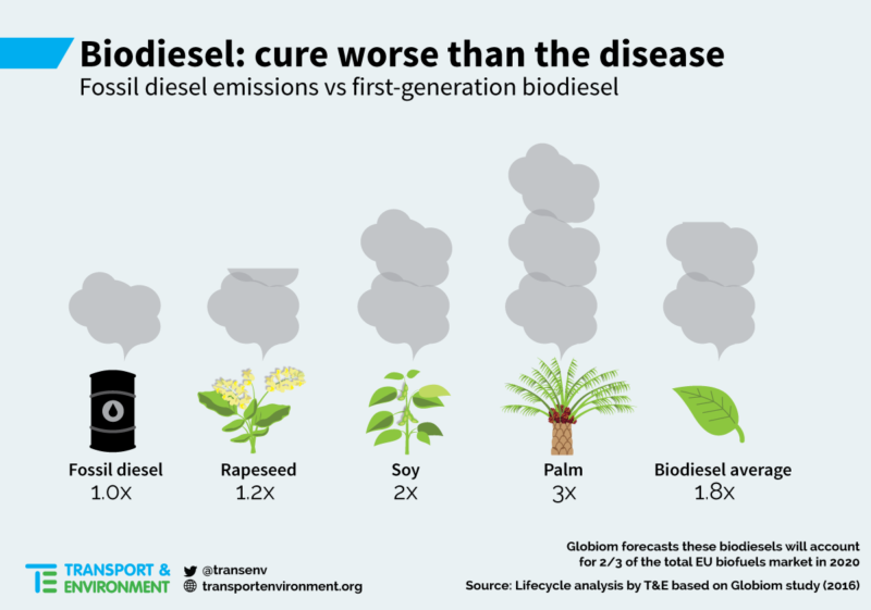 biodiesel worse for the environment than fossil fuels  warn green campaigners  u2013 euractiv com