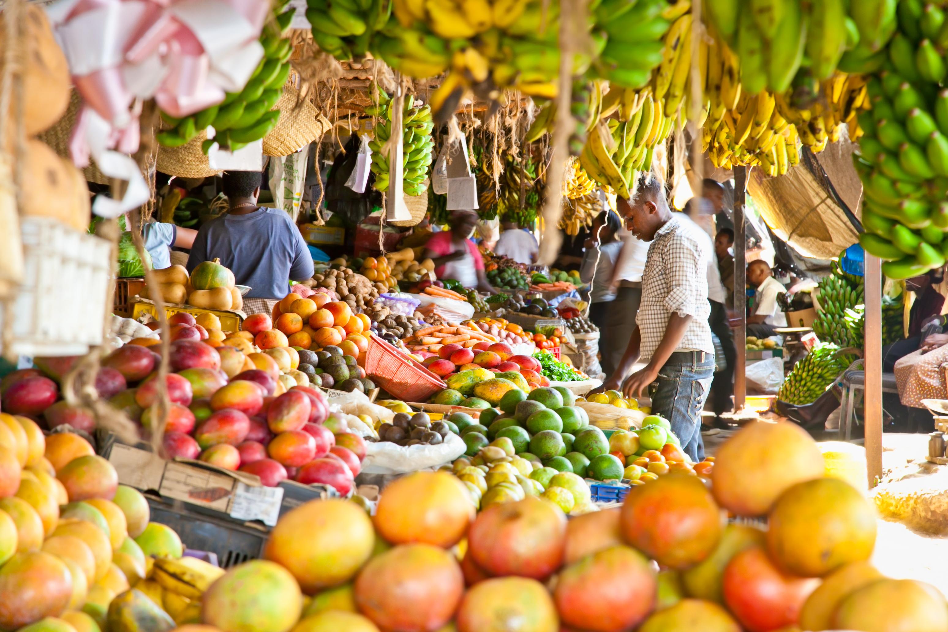 EU policy on Kenyan exports creating a local health crisis