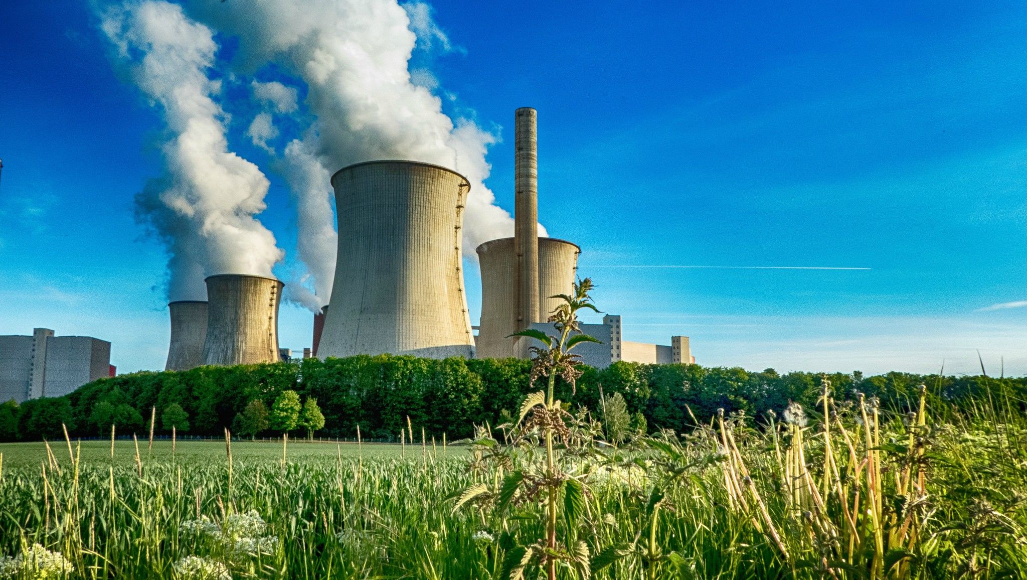 Coal pollution invades water air and