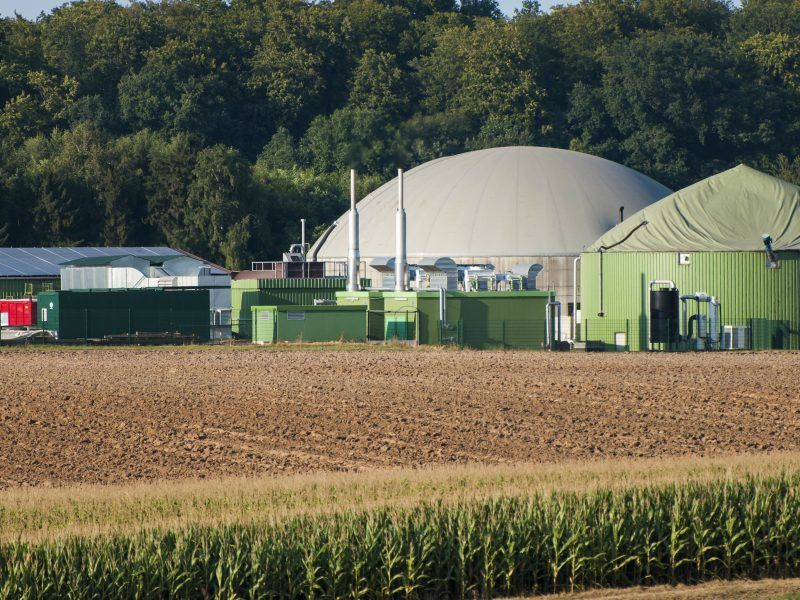 The future of biogas in Europe: it's a local affair