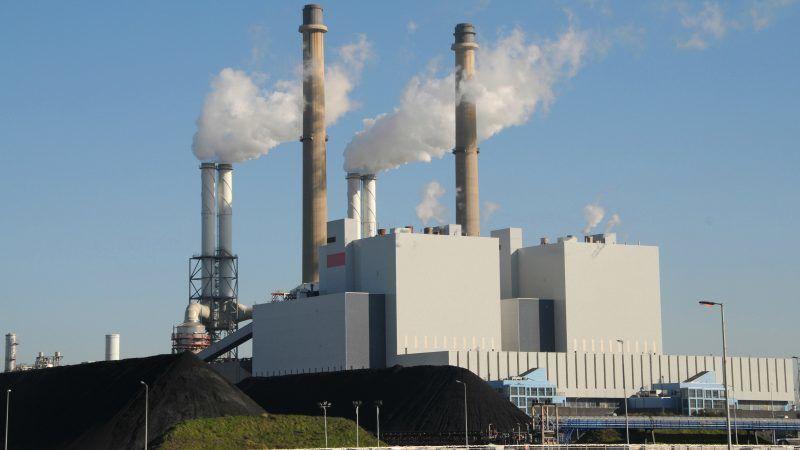 Biomass Policy Under The Spotlight As Eu Talks Kick Off