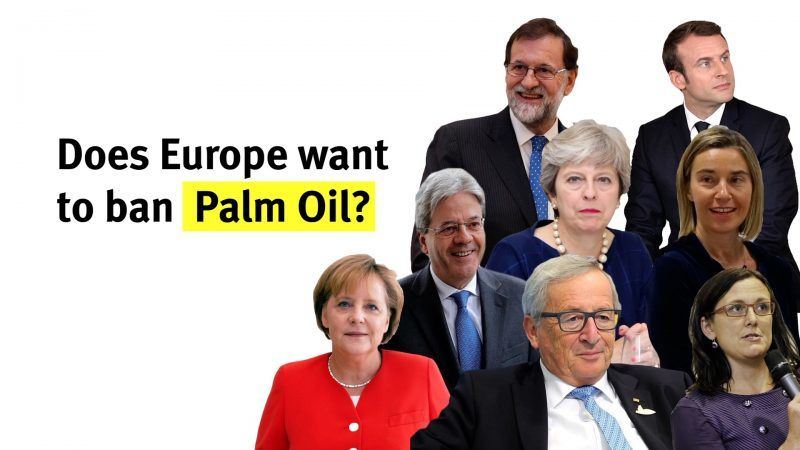 Does Europe want to ban Palm Oil