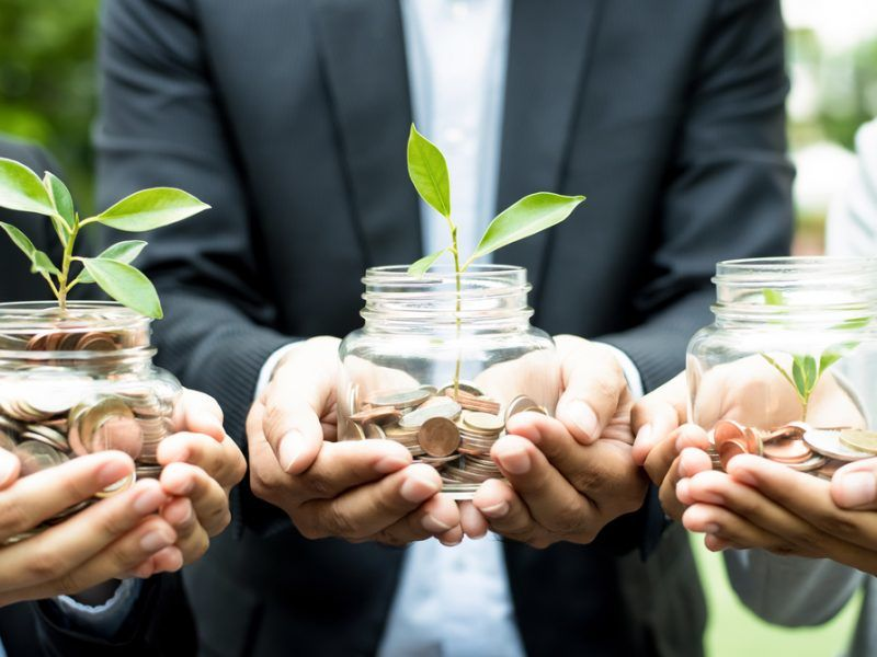 Sustainable finance expert: Investment transparency is crucial –  EURACTIV.com