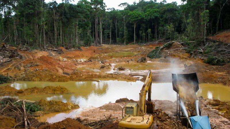 not enough done at eu level against imported deforestation