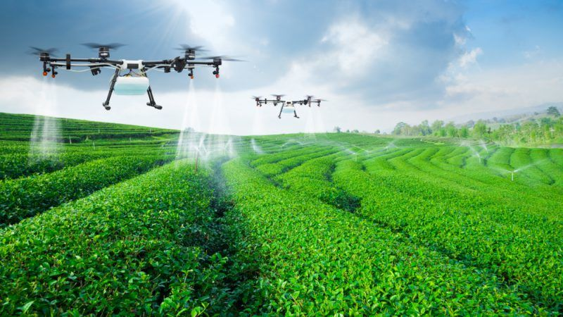 agriculture digitisation not only for controls stakeholders remind