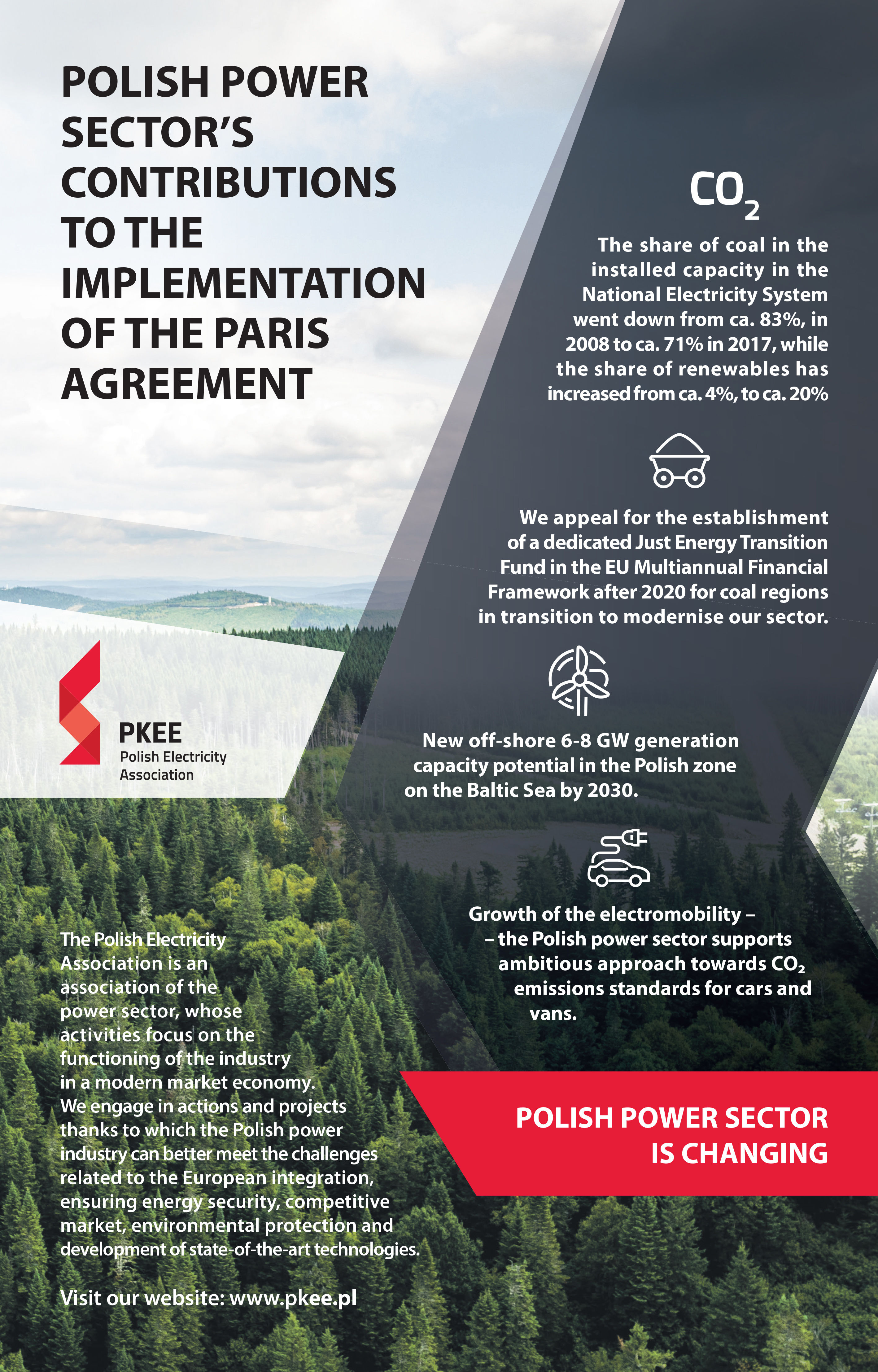 Polish Power Sectors Contributions To The Implementation Of The