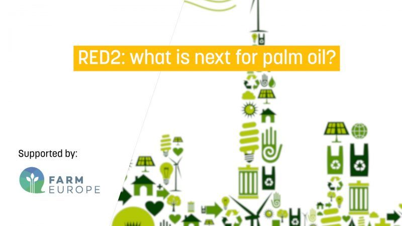 RED2: what is next for palm oil?