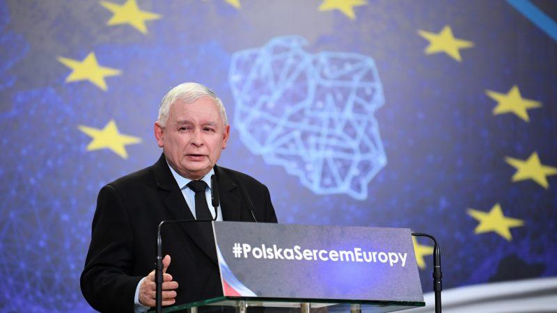 Ahead of EU polls, Poland's Kaczynski urges crossparty anti-euro stance