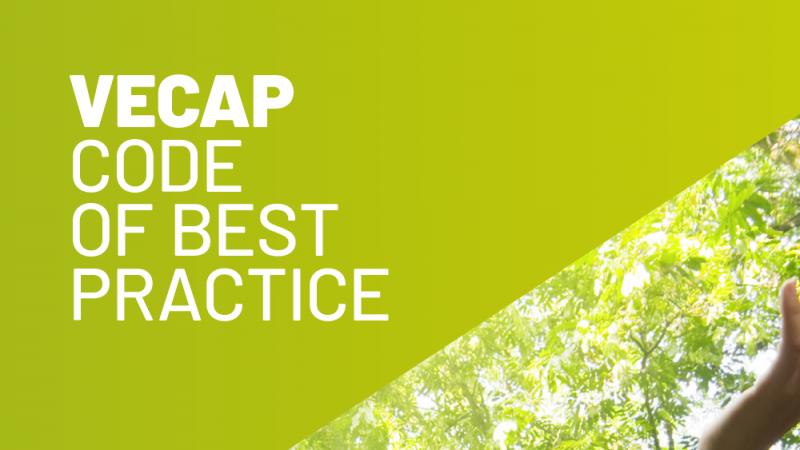 VECAP Infographic BSEF