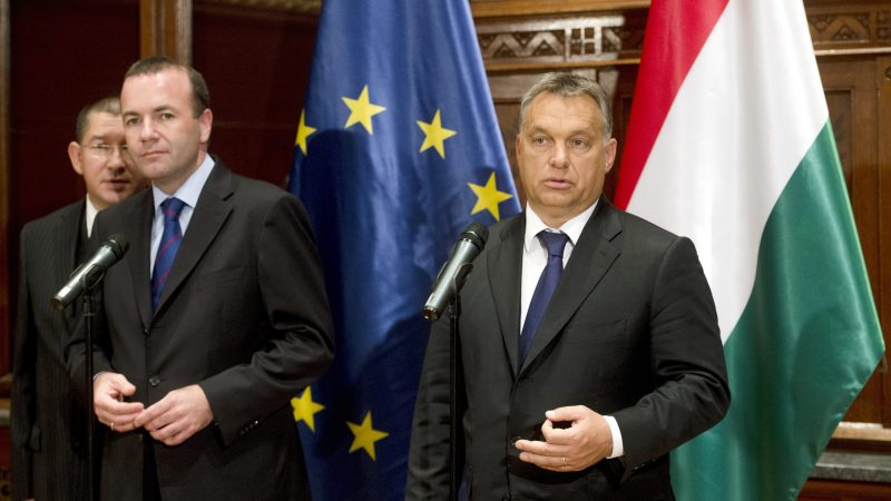 EPP divorce looms after Orban rejects Weber as Spitzenkandidat