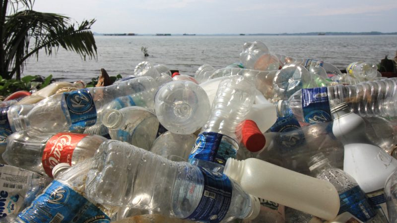 Средиземное море является самым загрязненным в Европе – исследование