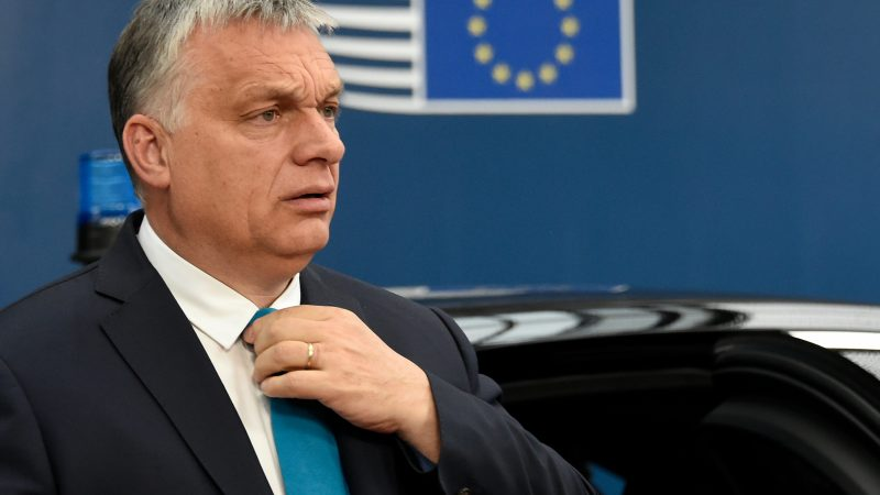 Hungary says 'no climate neutrality' without nuclear but backs EU target