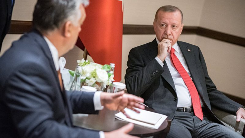 Erdogan thanks Orban for 'support at the international stage'