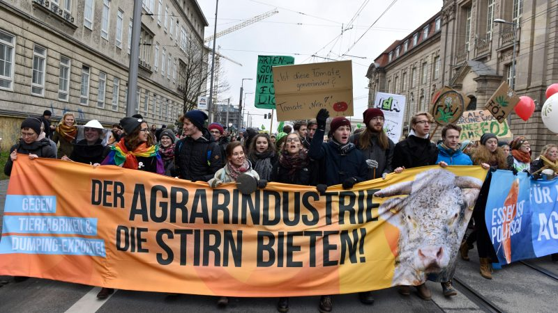 European farmers descend on Strasbourg in protest against planned CAP reform