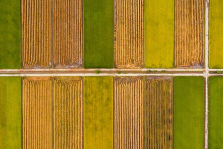 EU auditors, not just lawmakers, recognise the potential of digital farming tools