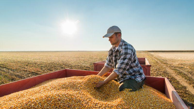 agriculture ile ilgili görsel sonucu