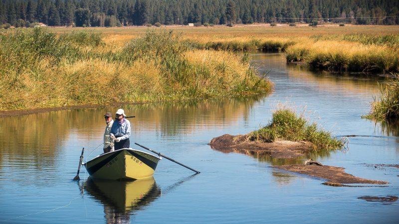 Europe must uphold key EU law protecting freshwater fishes - EURACTIV