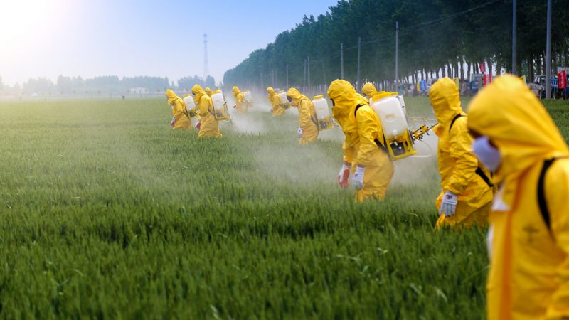Image result for pesticide