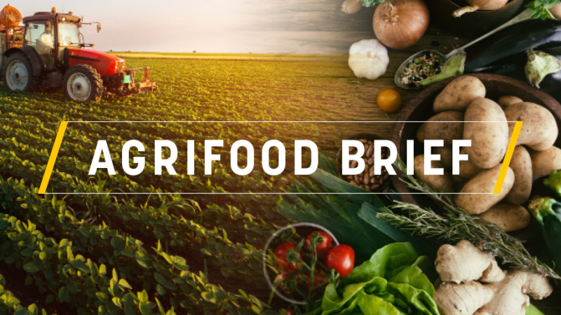 Agrifood Brief: Brussels revives hunger for (sustainable) vegemite