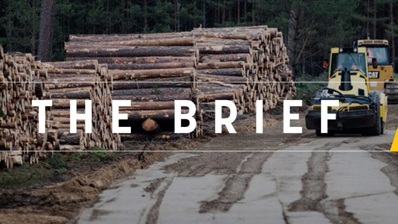 The Brief - It's the (green) economy stupid!
