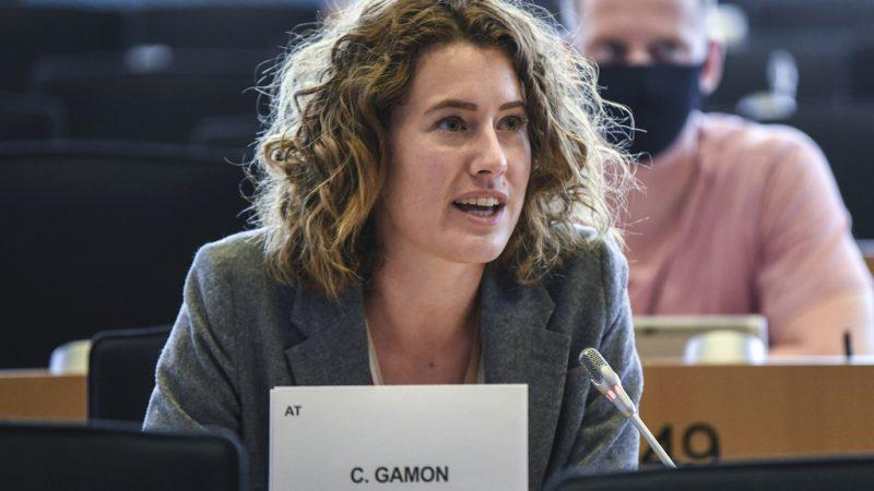 MEPs push for uniform EU concept on energy storage