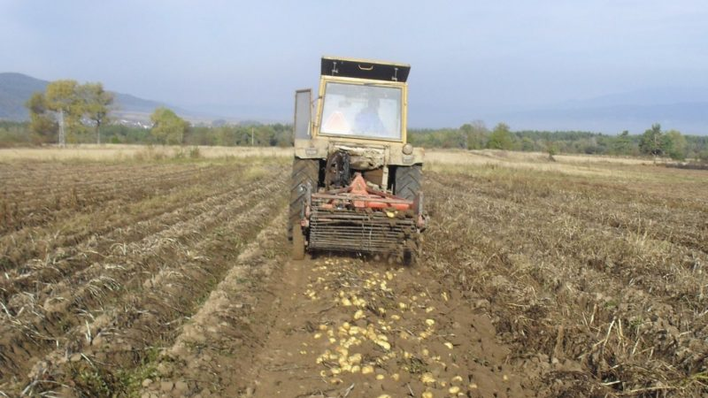Pesticide with EU-banned substance still widely used in Bulgarian agriculture